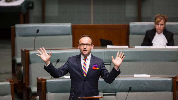 Greens MP Adam Bandt in the House of Representatives on Tuesday.
