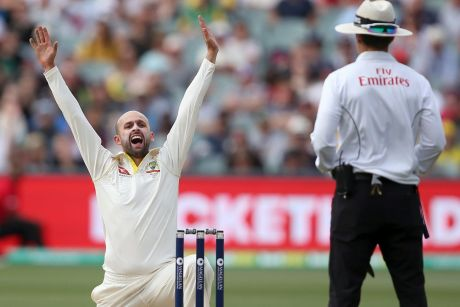 Asking the question: Nathan Lyon appeals to umpire Chris Gaffaney for a lbw decision on Alastair Cook. The appeal was ...