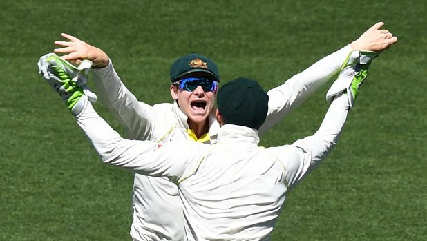 Pleasure and Paine: Steve Smith and Tim Paine celebrate victory in the second Test.