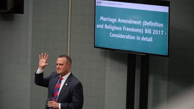 Liberal MP Tim Wilson in the House of Representatives during the same-sex marriage debate.