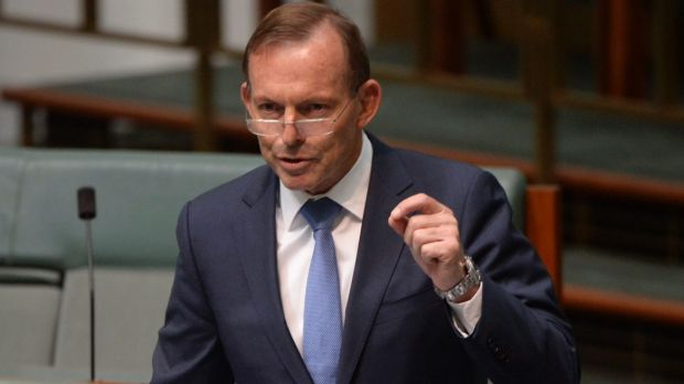 Tony Abbott: his style of opposition ultimately led him to inherit a paralysed government unable to make budget cuts or ...