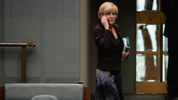 Foreign Affairs Minister Julie Bishop was confused about the Alex Hawke amendment. She first sat with 'no' voters before ...
