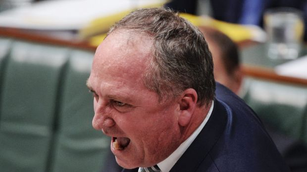 Deputy Prime Minister Barnaby Joyce in question time on Thursday.