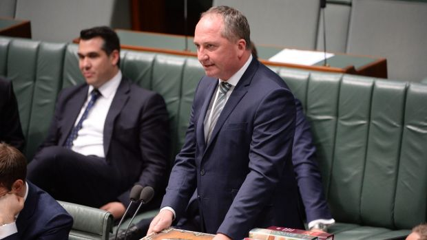 """Deputy Prime Minister Barnaby Joyce said he was not """"any sort of saint"""" during debate on gay marriage on Thursday."""