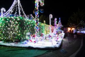 Phil Jensen has transformed his house into a christmas wonderland. Photo: Dion Georgopoulos