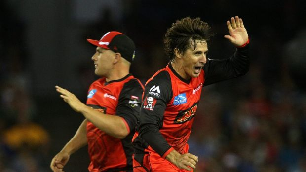 Renegades Aaron Finch and Brad Hogg.