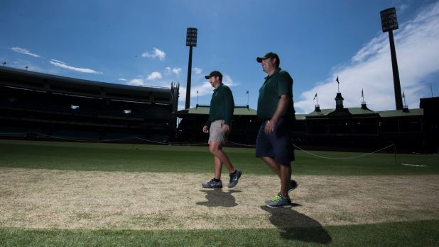 The SCG duo have worked hard on the Test pitch.