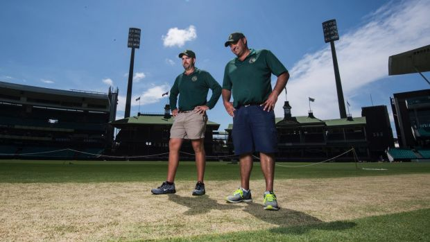 Adam Lewis and Justin Groves have been putting the finishing touches on their first Sydney Test wicket.