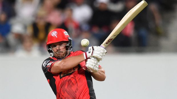 Crunch: Aaron Finch was devastating for the Renegades.
