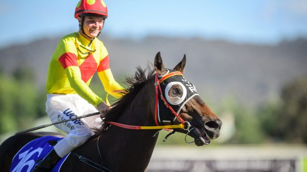 Rising Canberra jockey Patrick Scorse has taken aim at online trolls as the teenager prepares for his first Black Opal ...