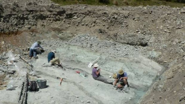 The fossil dig site at St Bathans in New Zealand where the fossilised remains of an extinct burrowing bat, Vulcanops ...