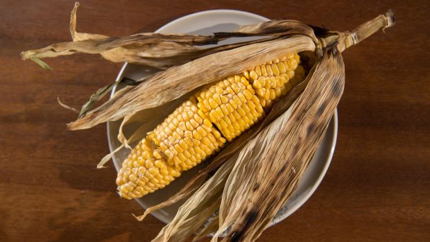 Buttered corn on the cob served in its husk.