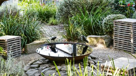 A birdbath is surrounded by native plants in Peter Shaw's Anglesea garden.