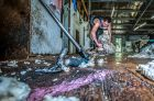 "Australian Wool Innovation are running a ""shearing school"" at Cavan station. Shearer Canberra's Ian Elkins helps ..."