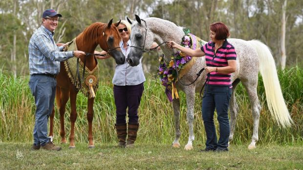 Greg, Julie and Jane Farrell with horses Chance to Dance and A Vision Mi.