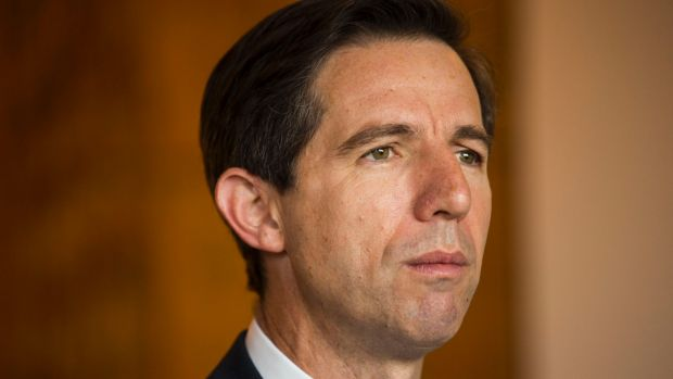 A review of teacher registration requirements announced by Federal Education Minister Simon Birmingham has been blasted ...