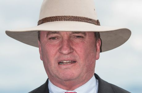 Barnaby Joyce speaks at a press conference in Tamworth on Wednesday.