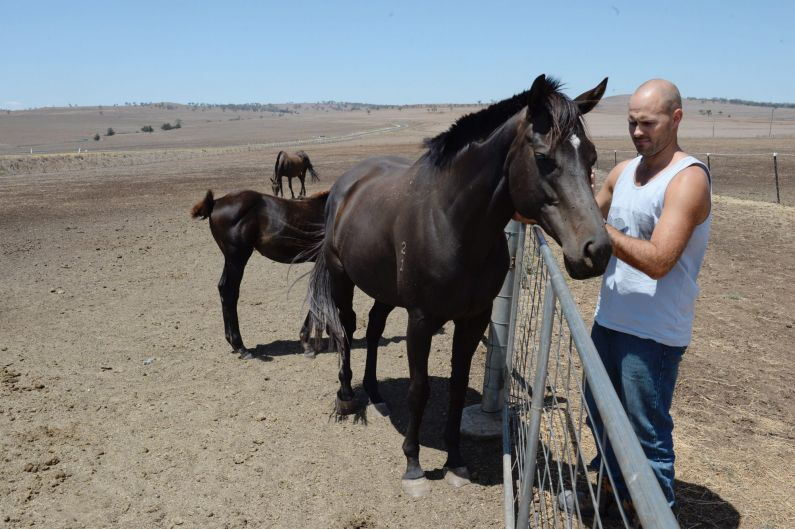 Farmer Alex Kean with his horses after destocking his cattle to Walcha. Drought is heavily impacting the NSW Upper ...