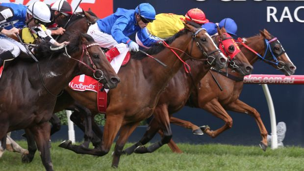 Canberra's Single Gaze, closest to the rails, just misses the win to Hartnell in the CF Orr Stakes.