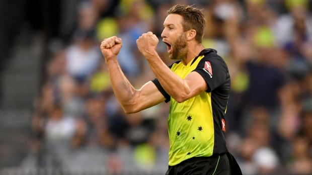 Andrew Tye celebrates taking the wicket of England's James Vince.