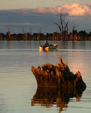 Environmentalists say rivers, wetlands and floodplains are at grave risk from a lack of environmental flows.