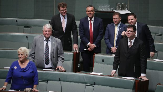 Nationals MPs Michelle Landry, Ken O'Dowd, Andrew Gee, Darren Chester, Llew O'Brien, George Christensen and Andrew Broad.