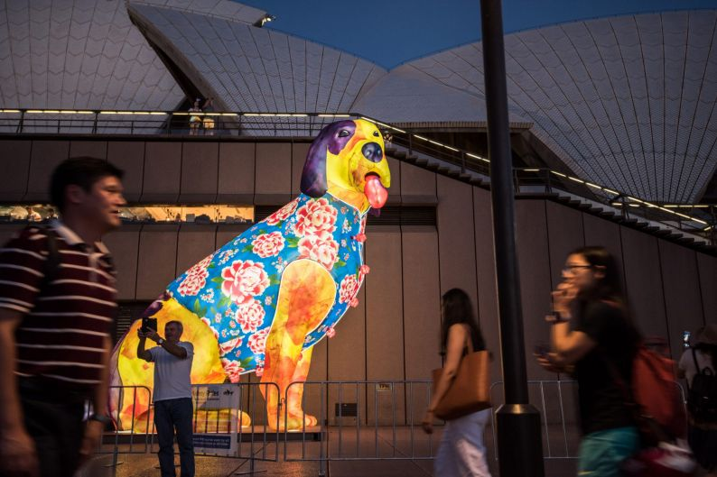 A large dog lantern has been constructed at the Opera House forecourt to celebrate the start of the Chinese new year of ...