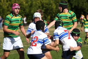 New era: Junior rugby will have changes enacted around the size of players this season.