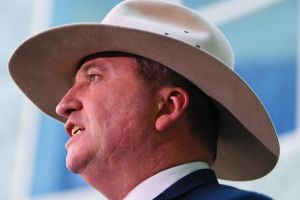 Barnaby Joyce addresses the media in the Parliament House court yard on Friday.