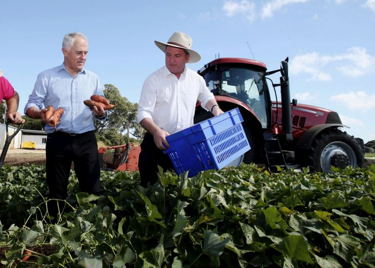Prime Minister Malcolm Turnbull and Deputy Prime Minister Barnaby Joyce visited a sweet potato farm with producer Eric ...
