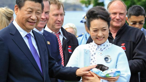 The 2014 visit to Hobart by Chinese President Xi Jinping and Madame PengLiyuan (pictured with a Tasmanian devil) spurred ...