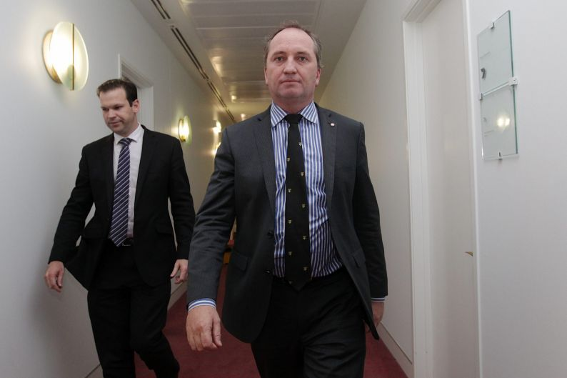 Senator Barnaby Joyce in the Press Gallery after doing a television interview with Sky News, at Parliament House in ...