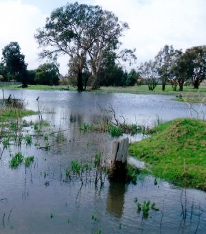 The wetland is now considered potentially too unstable for the earthworks required for development.