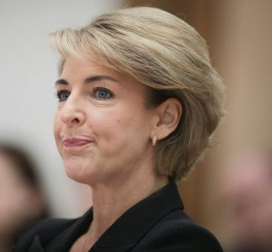 Minister for Jobs and Innovation Michaelia Cash during the estimates hearing on Wednesday.