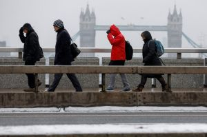 """The so-called """"Beast from the East"""" brought freezing weather to much of Britain and hit sales of garden and outdoor goods."""