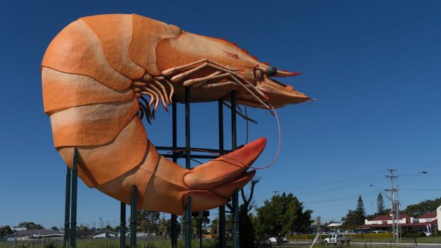 Think you could make Ballina's Big Prawn out of cake?