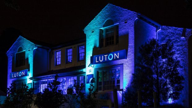 Luton Properties Manuka office is being lit up for Enlighten as private enterprise takes the initiative to be involved ...