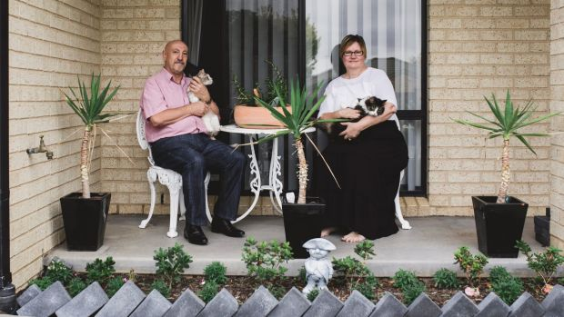 """Greg and Beth Peck, who have transformed their home into a """"smart home"""" by using Google Home device with their cats ..."""