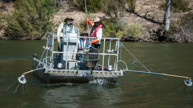 Aquatic ecologists aboard the electro-fishing boat, named after Frank Zappa.