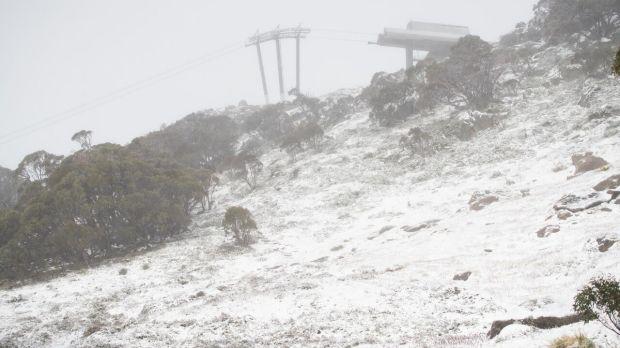 Thredbo saw 5cm of fresh snow fall at the weekend.
