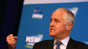 Prime Minister Malcolm Turnbull speaks at the NSW Liberal Party state council meeting on Saturday.
