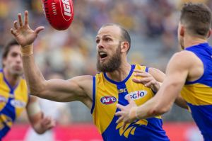 West Coast's Will Schofield has come back into the side for the preliminary final against Melbourne.