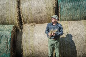 Drought stricken farmers in the greater Goulburn area receive 200 tonnes (450 bales) of donated hay at the Goulburn ...