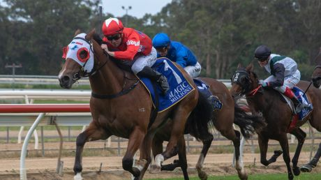 Eight races are scheduled for Wyong on Tuesday.