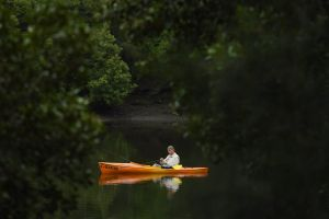 A man fishing from his small boat on the Cooks River at Kendrick Park in Tempe, Sydney.
