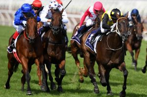There are seven races on the card at Port Macquarie on Monday.