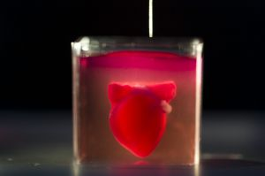 A 3D printer prints a heart with human tissue during a presentation at the University of Tel Aviv,