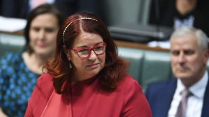Federal Environment Minister Melissa Price was under pressure to sign off on the Adani project before the election.