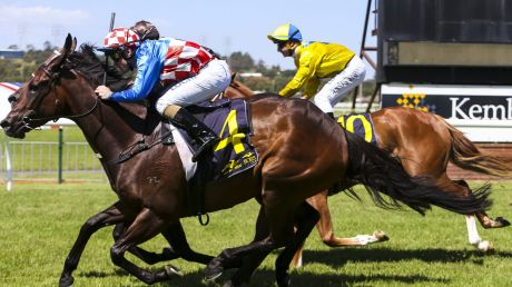 Home on the Grange: there are seven races scheduled for Kembla today.