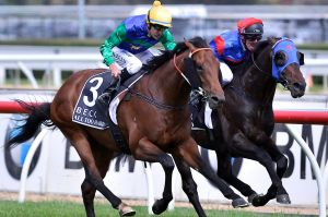 Bloodlines: All Too Hard will be among several group 1 winners with progeny stepping out at Kembla on Tuesday.